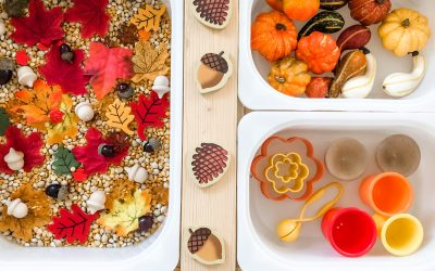 1 Autumn Sensory Bin – 5 Ways to Play