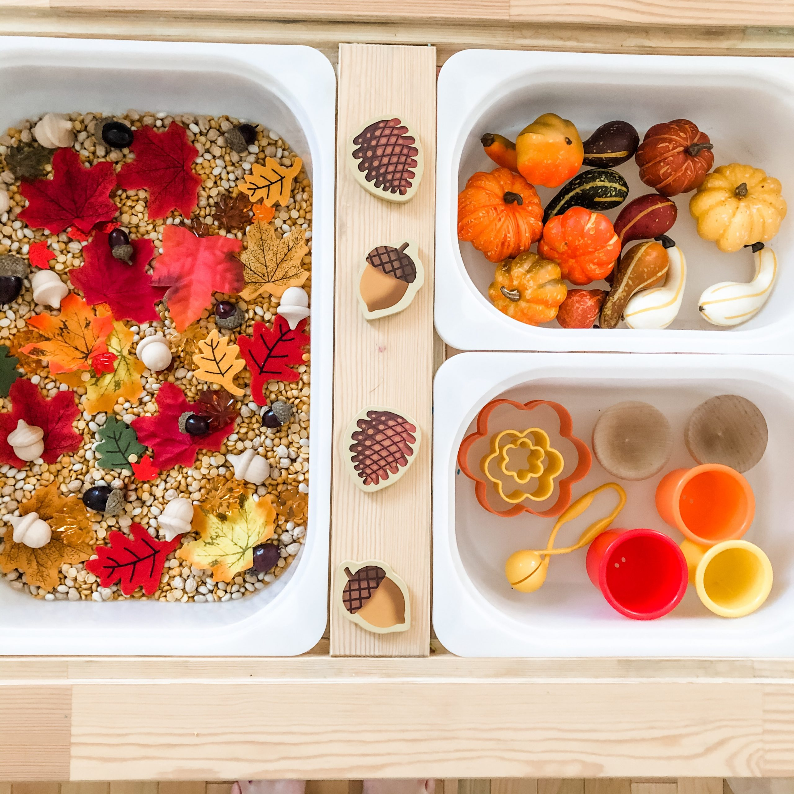 Autumn Sensory Bin - 5 Ways to Play
